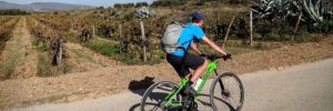 fietsen in Penedès